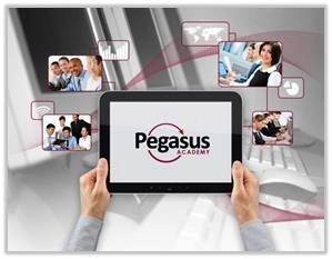 Image promoting the Pegasus Academy