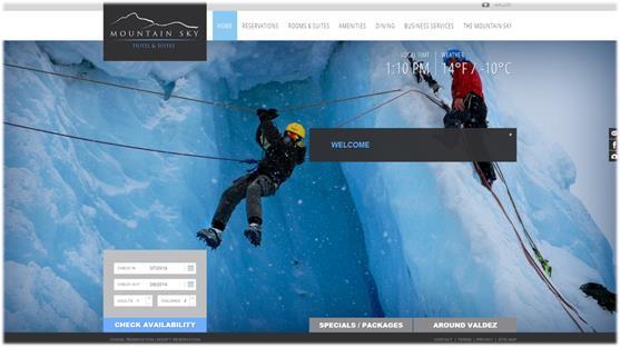 Screenshot - www.mountainskyhotel.com