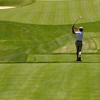 Golfer on a tee