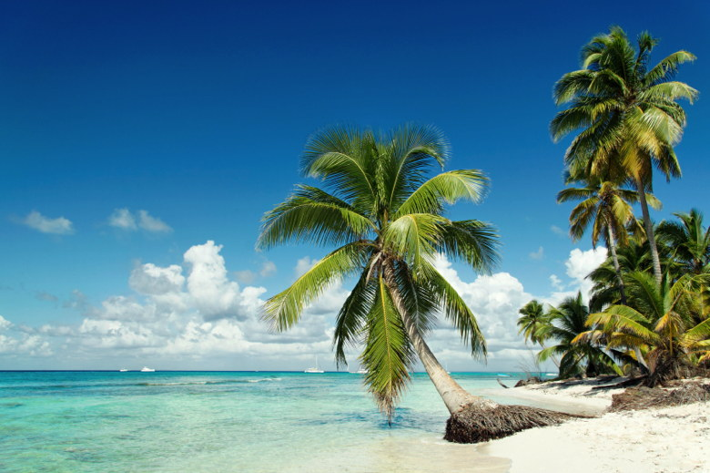 Image of Caribbean beach