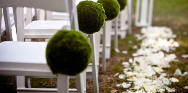 Picture of chairs lined up for a wedding reception