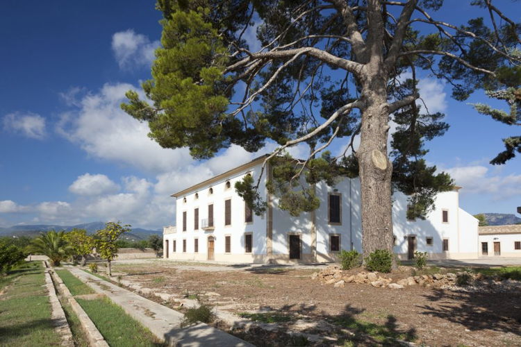 Picture of Historic Country Estate for Sale in Thriving Palma de Mallorca