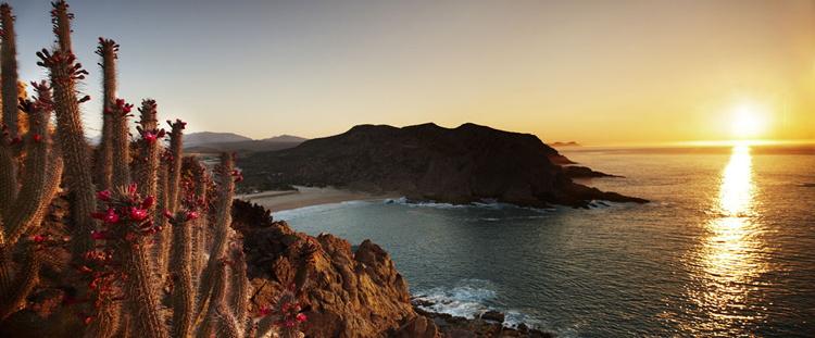 Maravilla Los Cabos