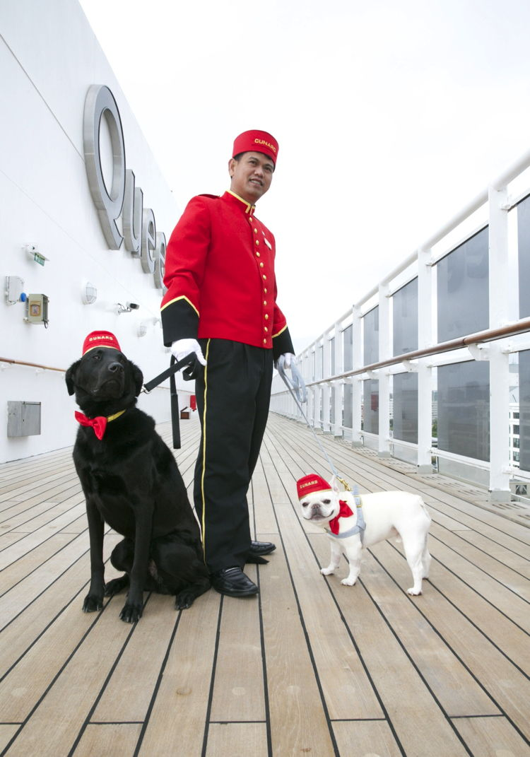 Two dogs on Queen Mary 2