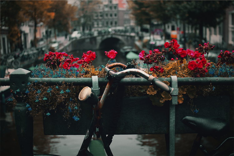 A bike in front of a canal in Amsterdam - Unsplash