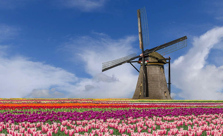 A windmill in Holland