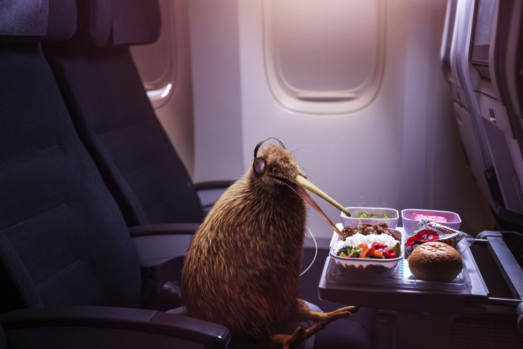 Image form Air New Zealand campaign