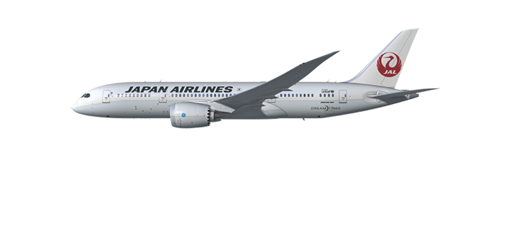 Japan Airlines Dreamliner