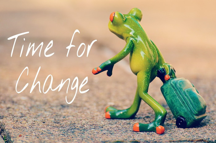 A frog with a suitcase and the words - Time for a change