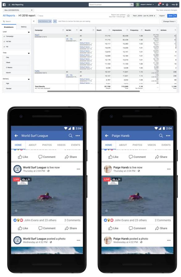 Screenshot - Facebook Ads Reporting
