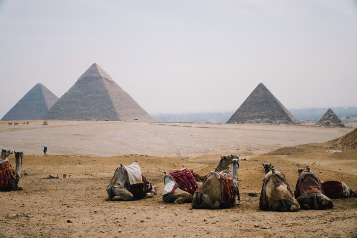 Giza, Egypt - Photo by Pradeep Gopal on Unsplash