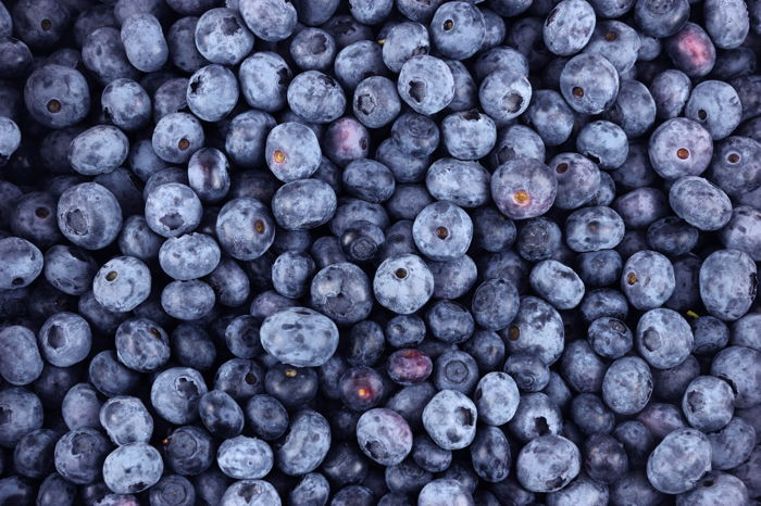 Blueberries - Source Winnow Solutions