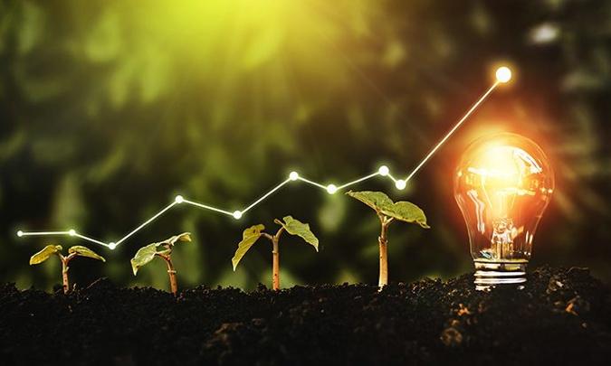 Seedlings and a light bulb - Source HFTP